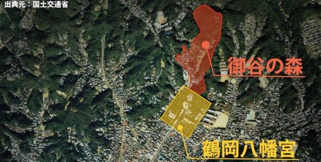 (映像教材1「鎌倉と風致保存会」より。鎌倉の裏山、御谷の森を紹介)