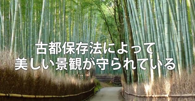 (映像3「開発から自然を守る活動」より。鎌倉風致保存会の活動がきっかけで、古都保存法が生まれた)