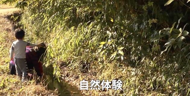 (映像教材5「豊かな自然のある暮らしを守ろう」。七里ガ浜小学校の子どもたちにとって、広町の森は、身近にある大切な自然)