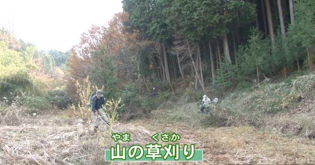 (地域でギフチョウを守る活動をしている、伊賀ふるさとギフチョウネットワークの人たちの活動を紹介する映像教材)