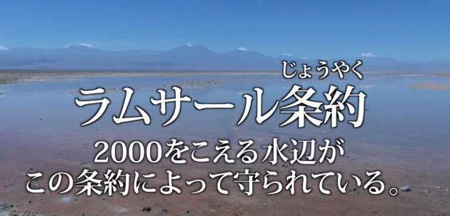 (ラムサール条約登録湿地の美しい風景と「田んぼ」のイメージが、授業を通じてつながってきた)