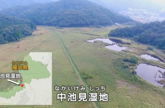 (映像教材1「世界が注目!中池見湿地」より。上空からみた中池見湿地)