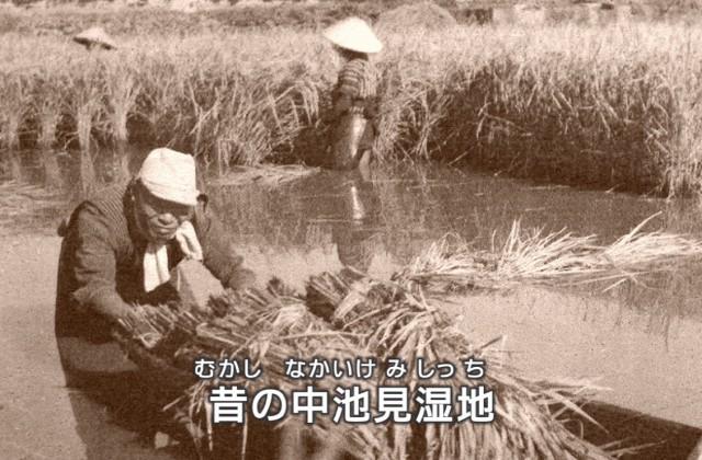 (映像教材2「中池見湿地の歴史」より)